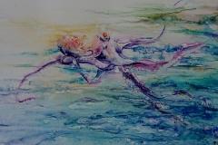 Insaisissable poulpe